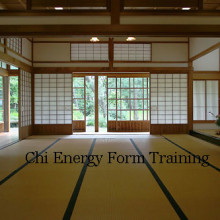 Chi Energy Form Training Part Four