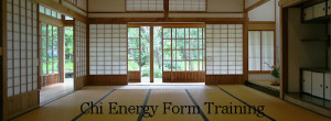 The Online School of Chi Energy Training