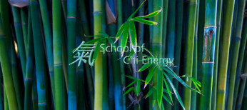 www.chienergyheals.com